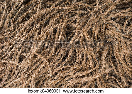 """Stock Photography of """"Ropes made of coconut fibres or coir."""