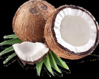 Coconut PNG Transparent Images.