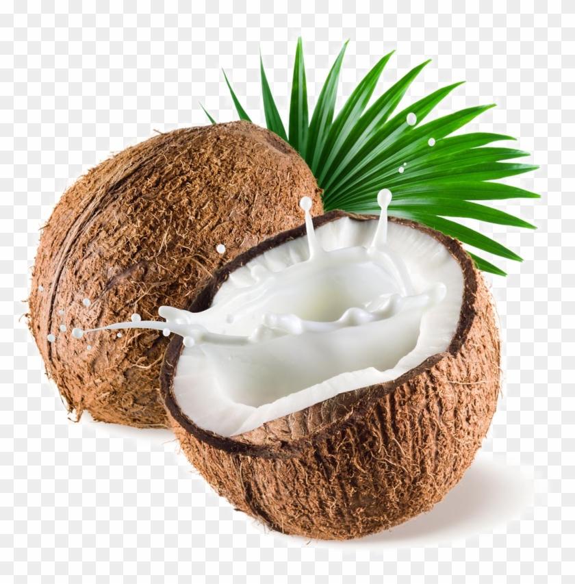 Coconut Png Image Transparent Background.
