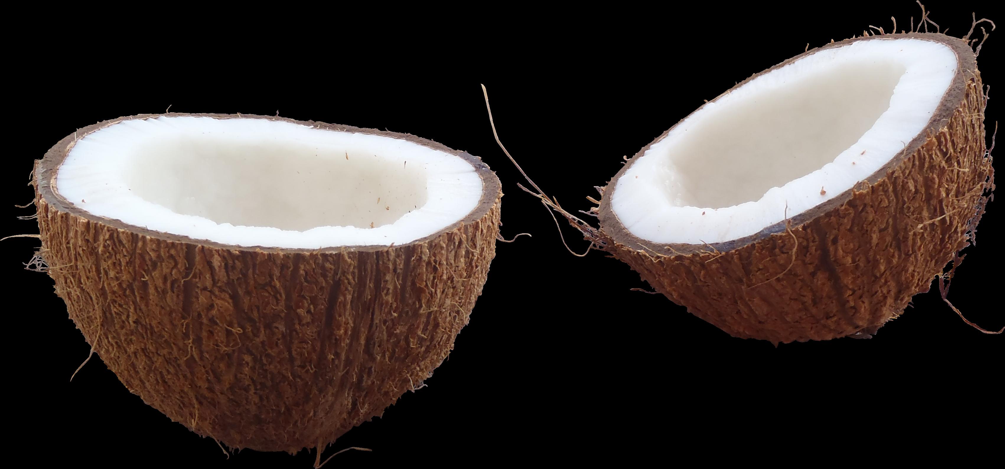 Coconut PNG Images Transparent Free Download.