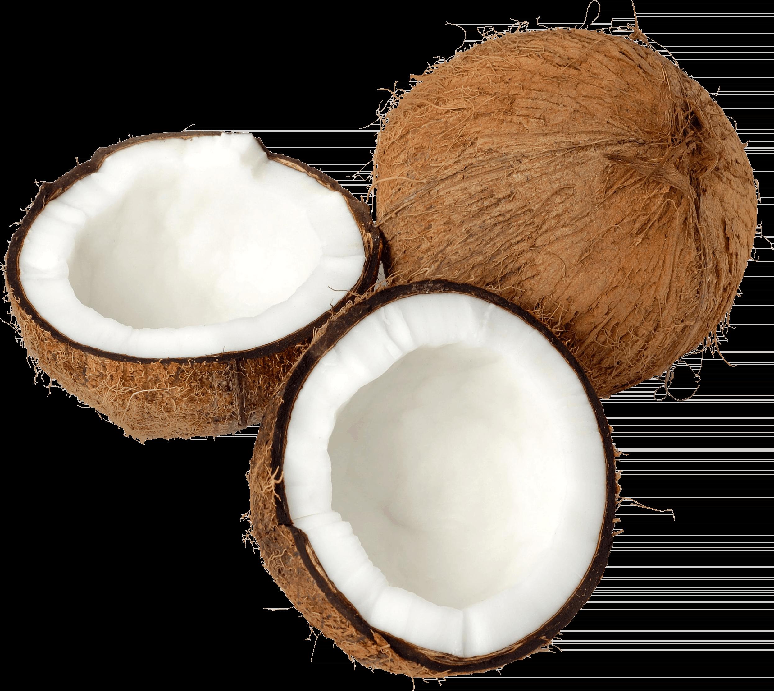 Coconut Trio Open transparent PNG.