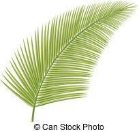 Fronds Clipart Vector and Illustration. 4,090 Fronds clip art.