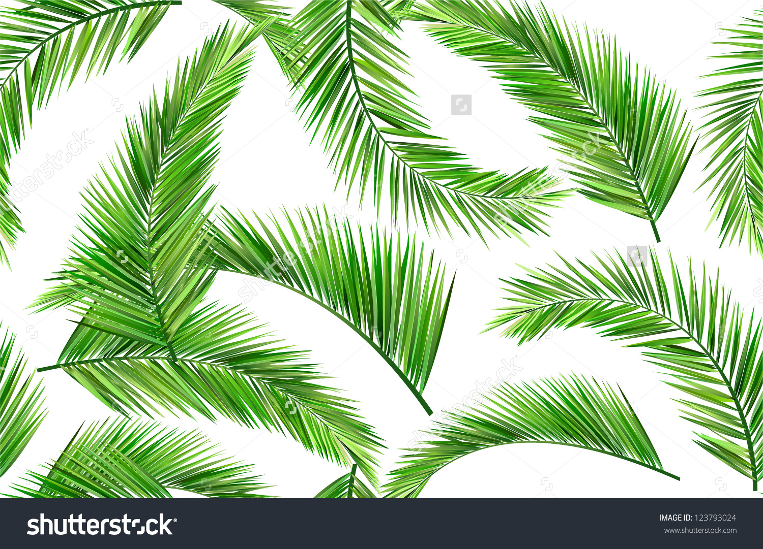Seamless Repeat Coconut Leaves Stock Vector 123793024.