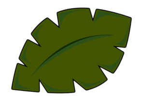 Coconut leaf clipart.