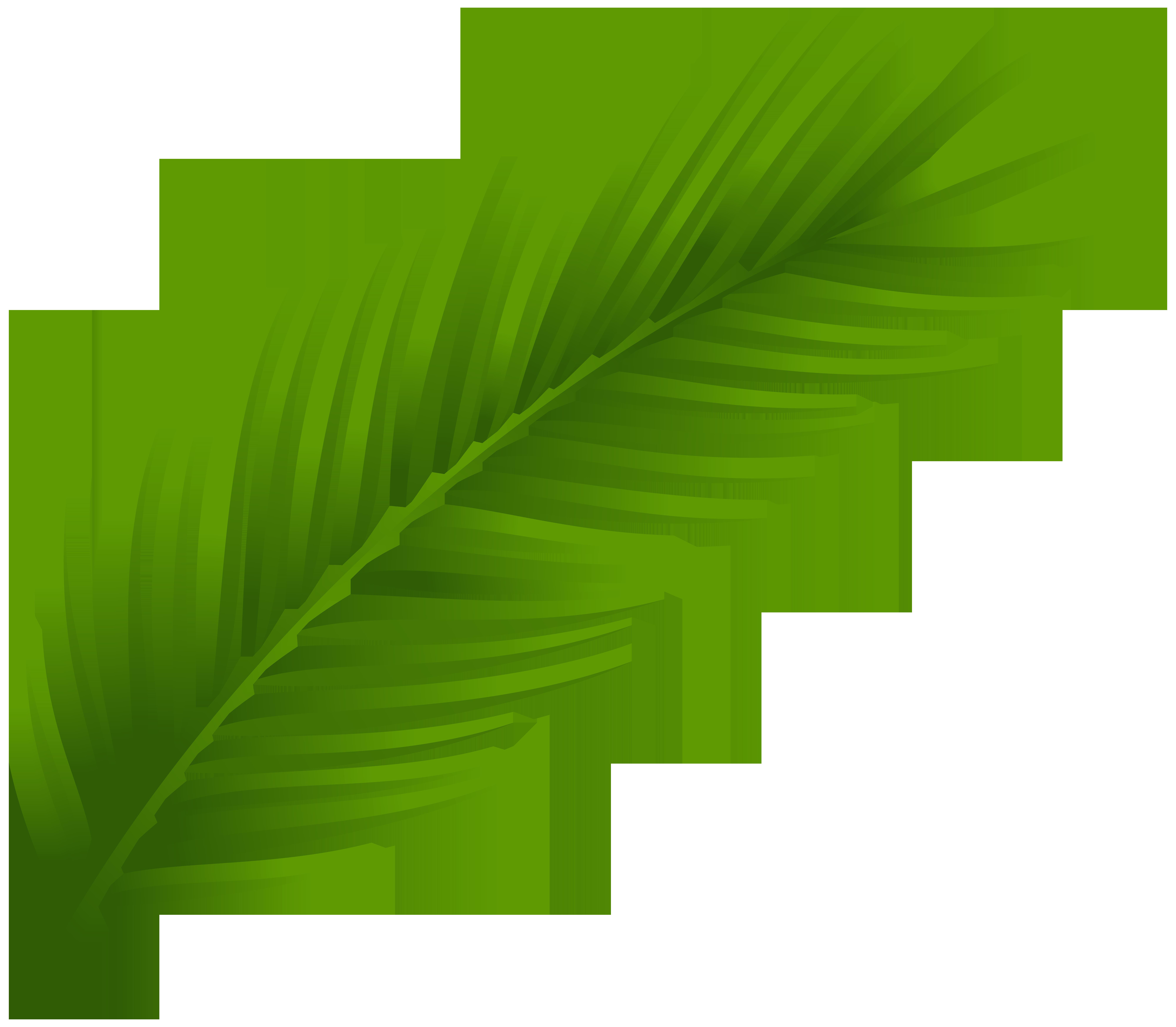 Coconut Leaf Clip Art.