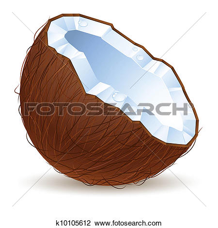 Drawing of Coconut Milk coconut.