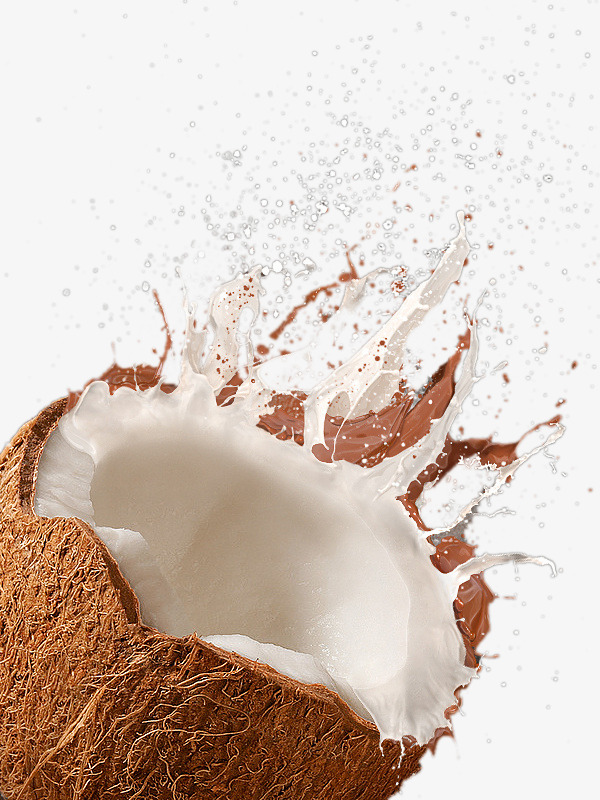 White Coconut Milk, Coconut Clipart, Milk Clipart, Coconut PNG.