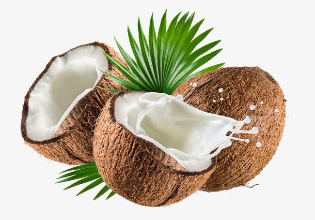 Coconut, Coconut Milk, Coconut, Deliciou #7830.