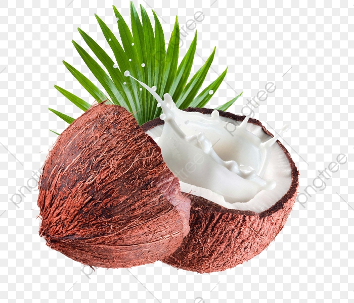 Free Coconut Coconut To Pull Material, Coconut Clipart, Coconut.