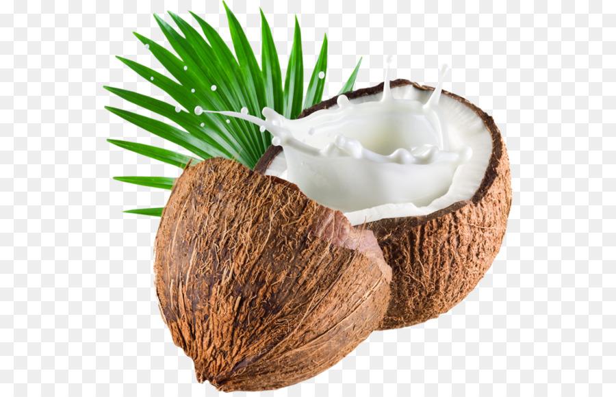 Coconut Cartoon png download.