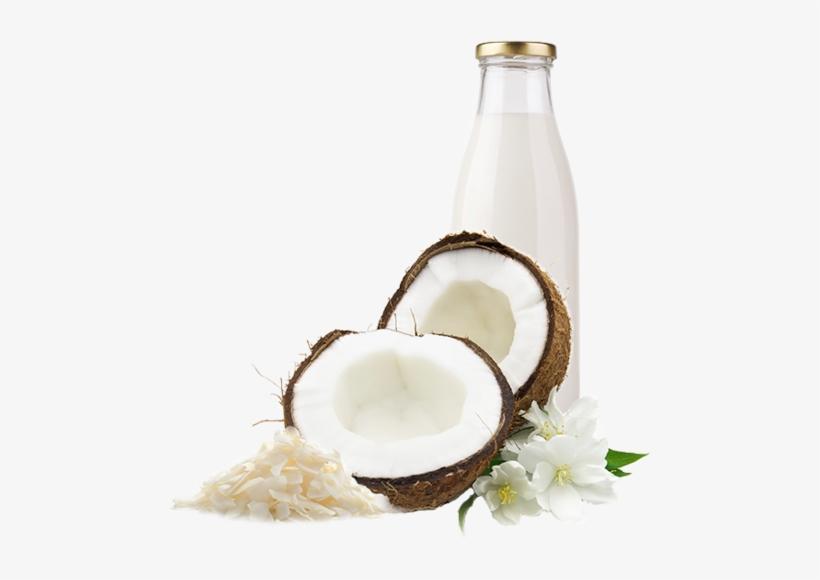 Coconut Milk Png.