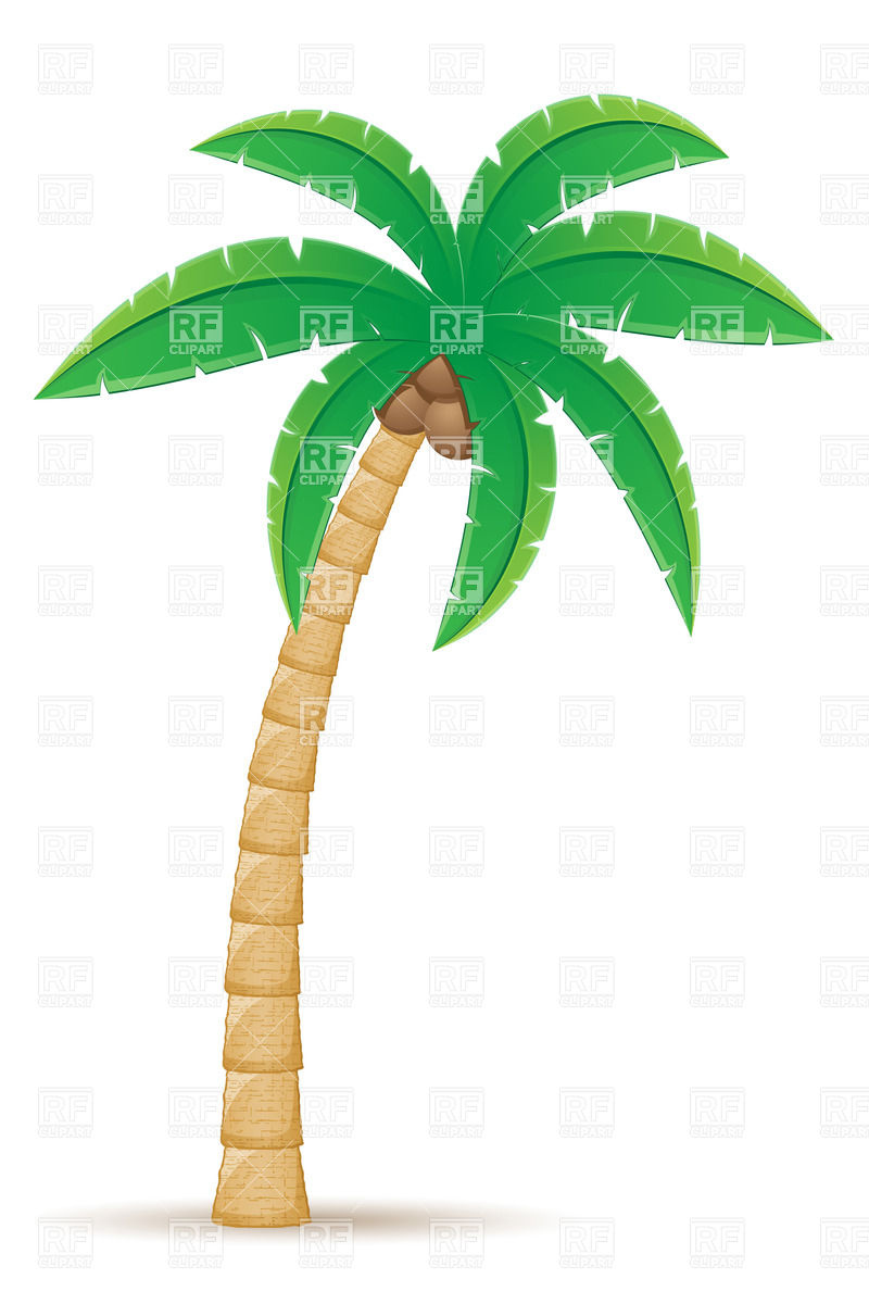 Beach Coconut Palm Tree Clipart.