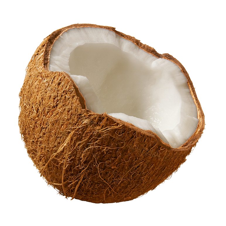 Coconuts PNG Image.