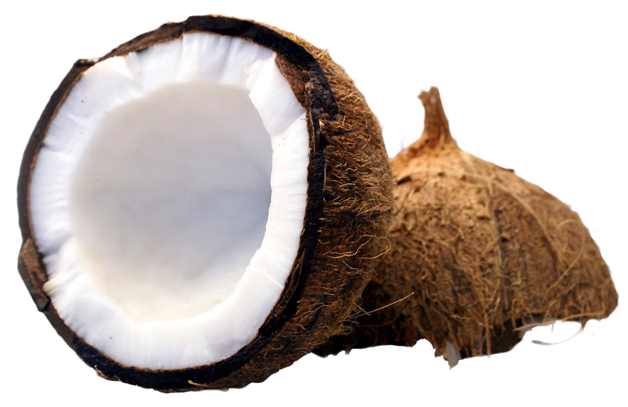 Coconut PNG Images Transparent Free Download.