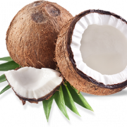Coconut PNG Image.