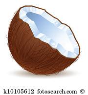 Coconut shell Clip Art Vector Graphics. 550 coconut shell EPS.