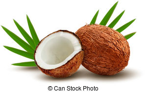 Coconut shell Vector Clip Art Royalty Free. 614 Coconut shell.