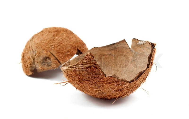Coconut shell on a white background.