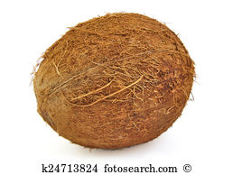 Coconut shell Illustrations and Clipart. 72 coconut shell royalty.