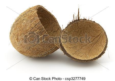 Coconut husk clipart.