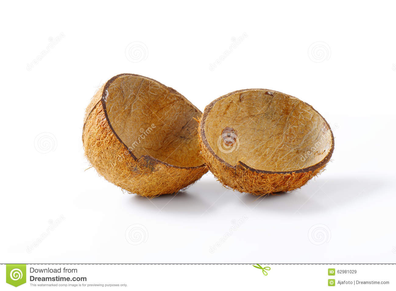 Coconut Shell Clipart.