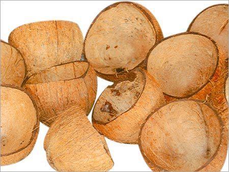 Coconut Shells in Chennai.