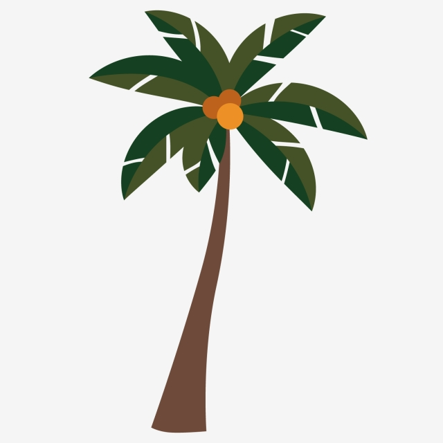 Download Free png Pretty Coconut Tree Shadow, Coconut Clipart, Tree.