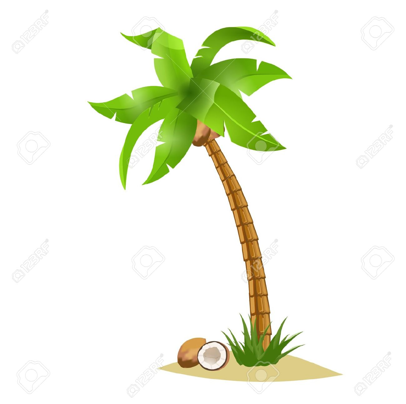 Coconut tree clipart images.