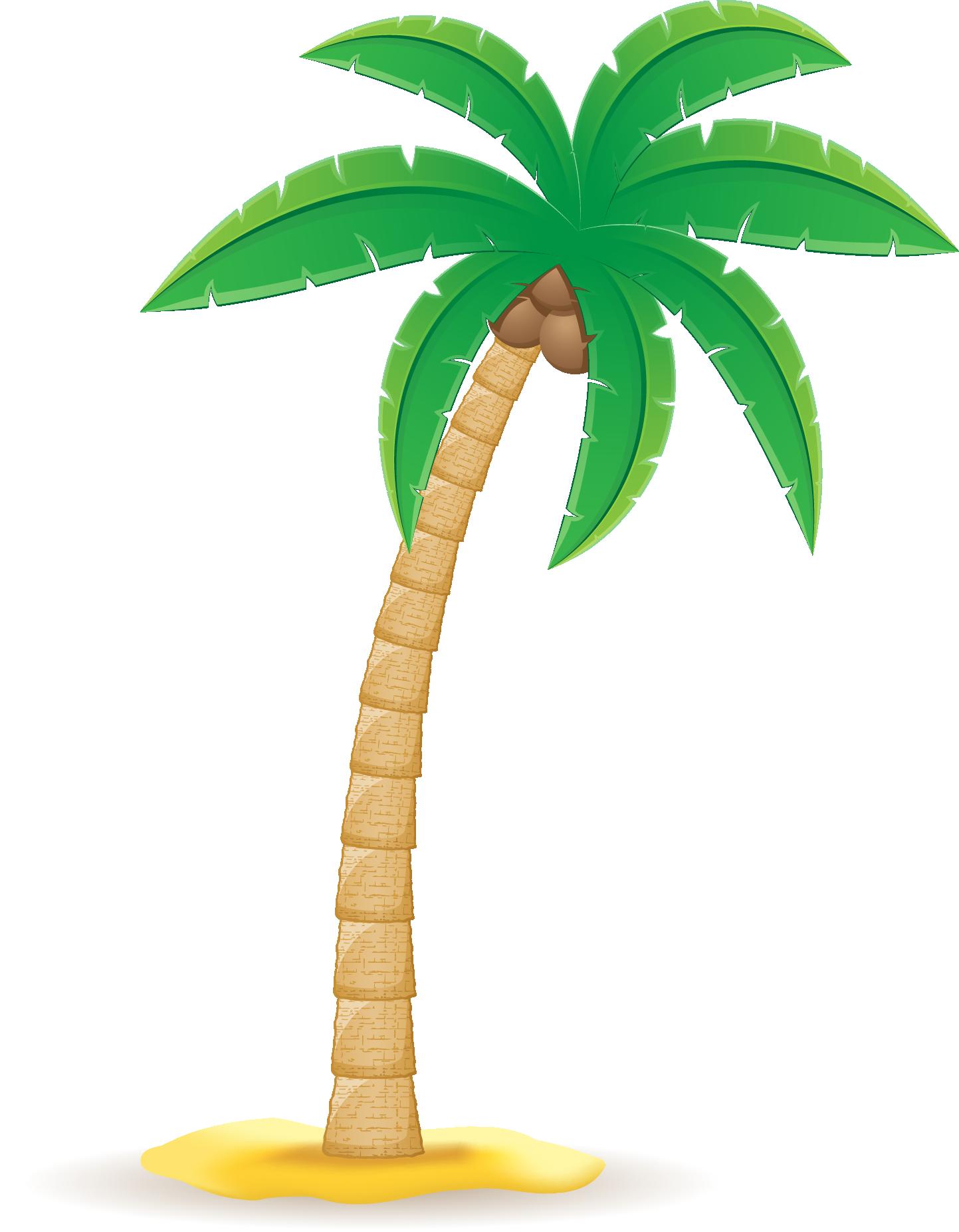 Coconut Arecaceae Clip art.
