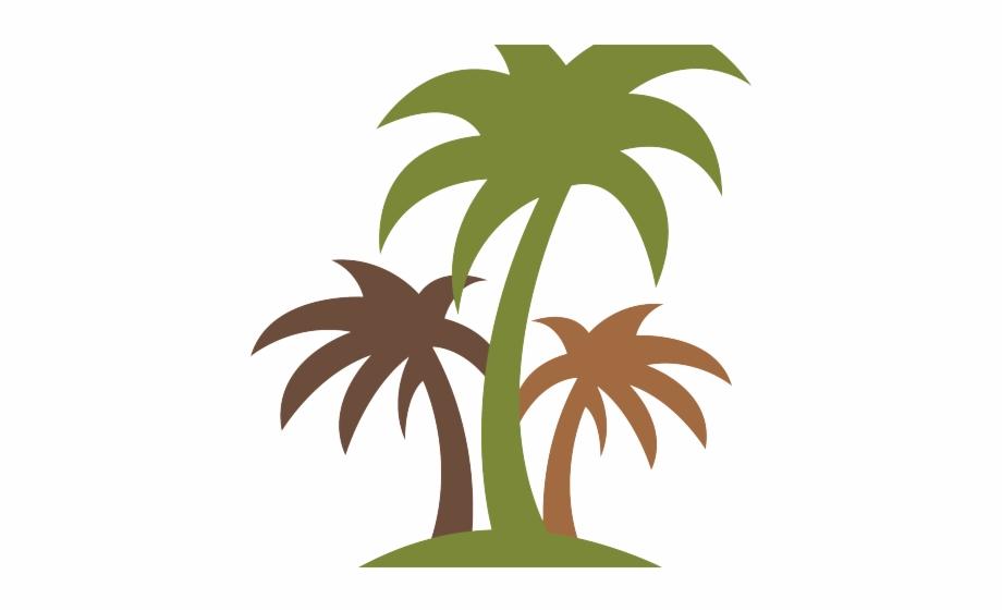 Plants Clipart Coconut Tree.