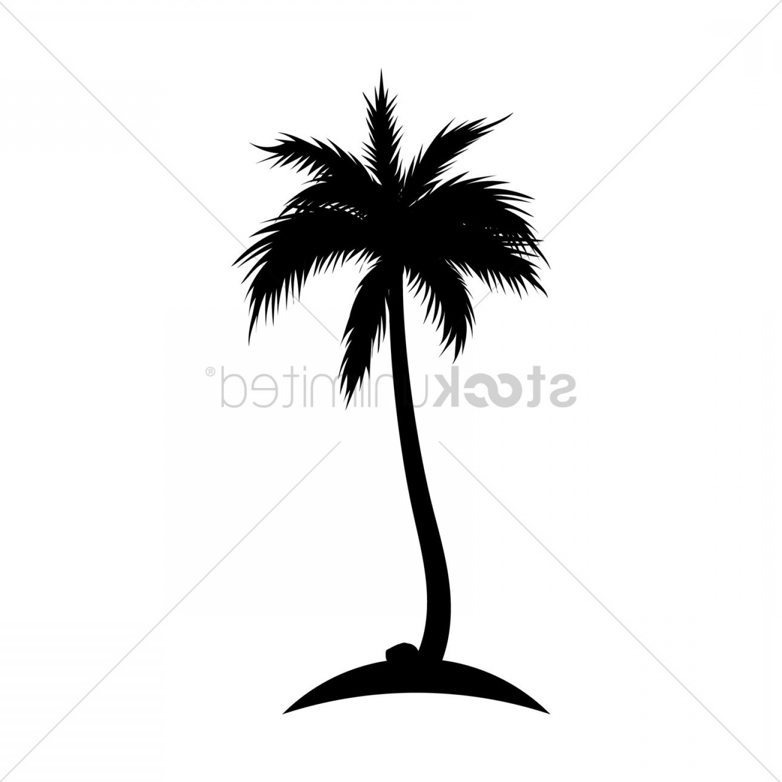 Coconut Tree Clipart Black And White Png.