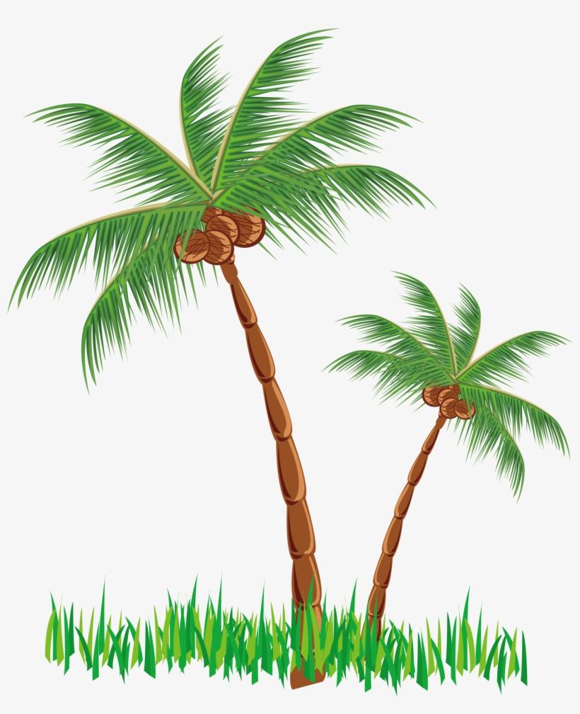 Coconut Clipart Tree.