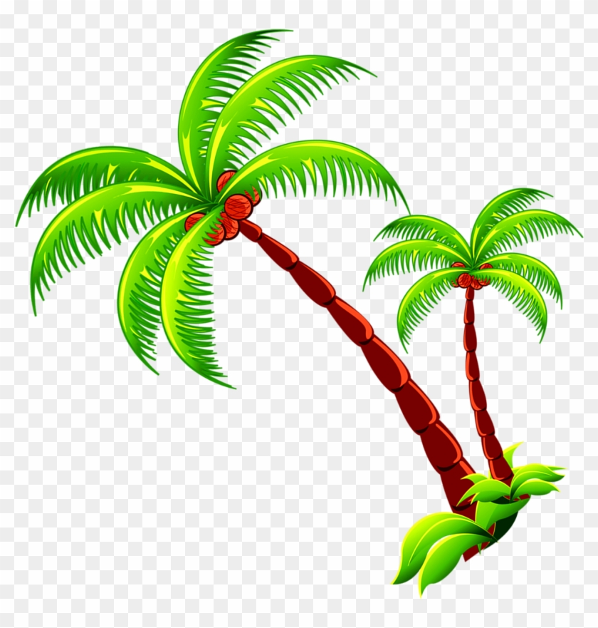Coconut Tree Branch Free Photo Png Clipart.