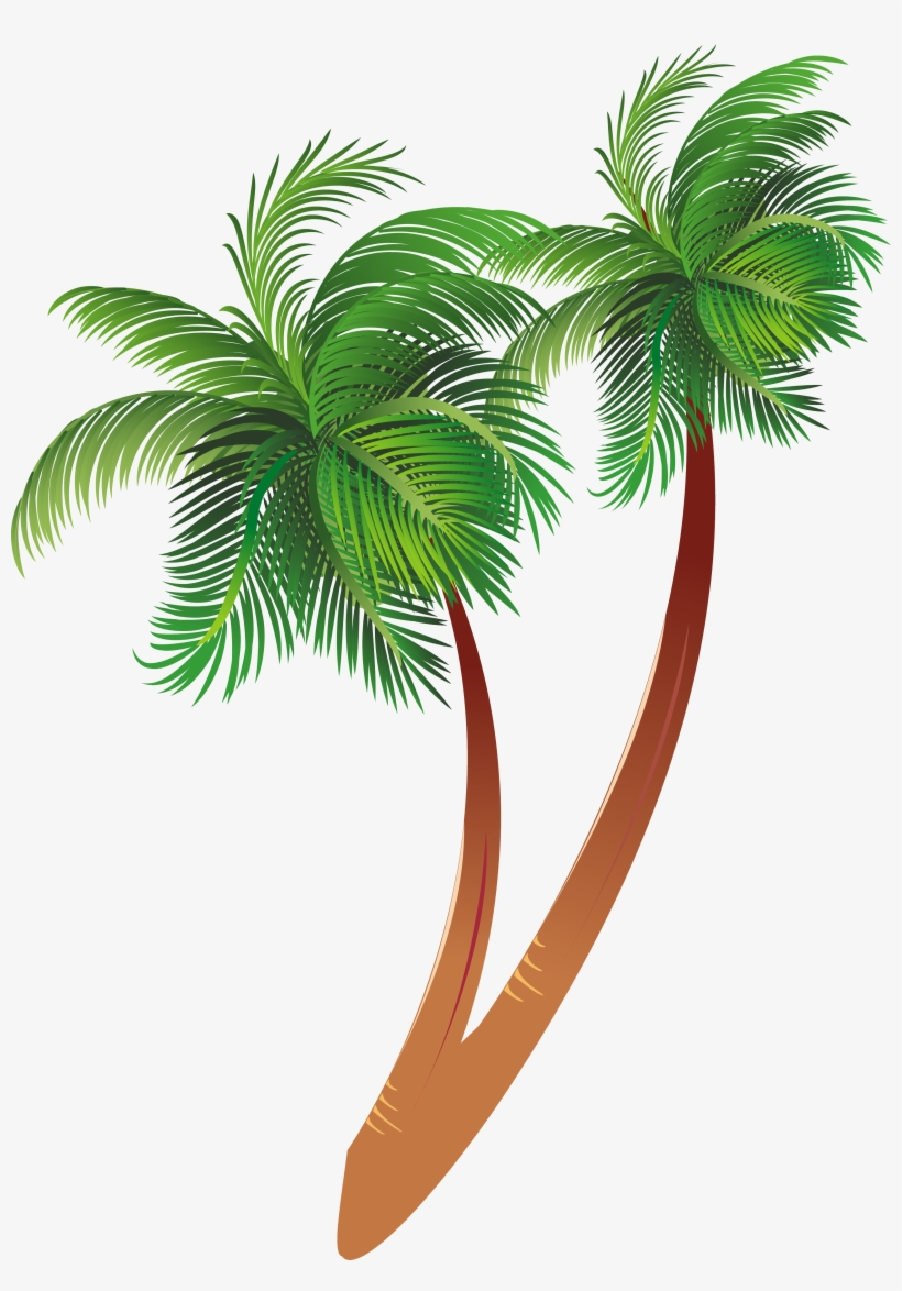 Free Download Cartoon Palm Tree Clipart Coconut Palm.