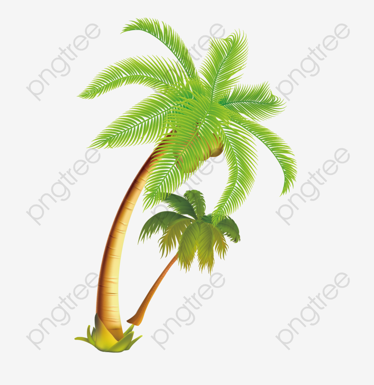 Tropical Coconut Tree Vector Material, Coconut Clipart, Tree Clipart.