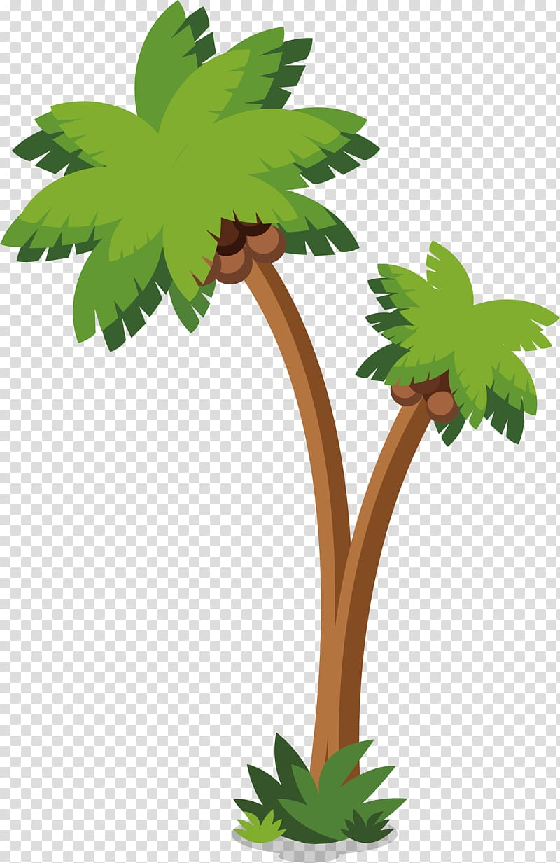 Arecaceae Coconut Tree, Coconut trees on the island transparent.