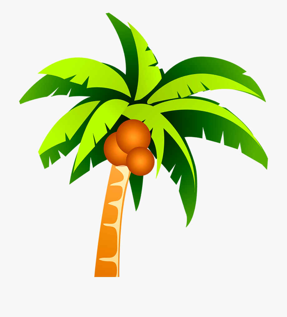 Coconut Tree Png.