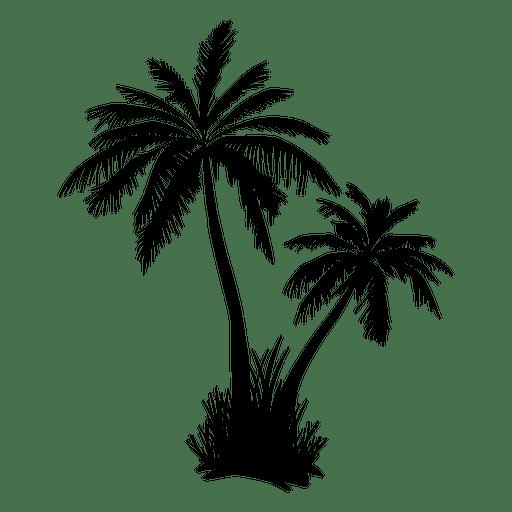 Arecaceae Tree Clip art.