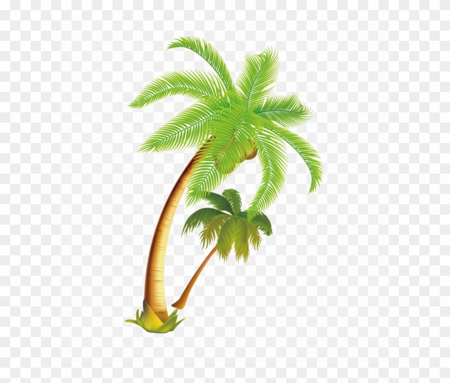 Coconut Tree Vector Png Clipart Palm Trees Coconut.