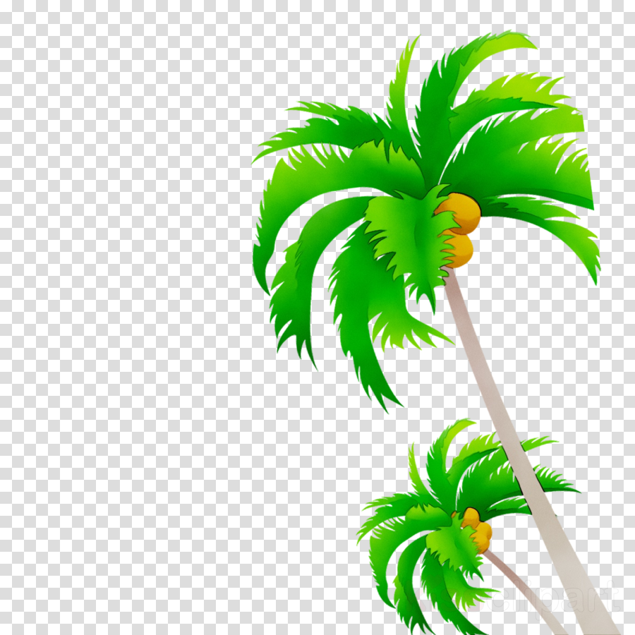 Coconut Tree Cartoon clipart.