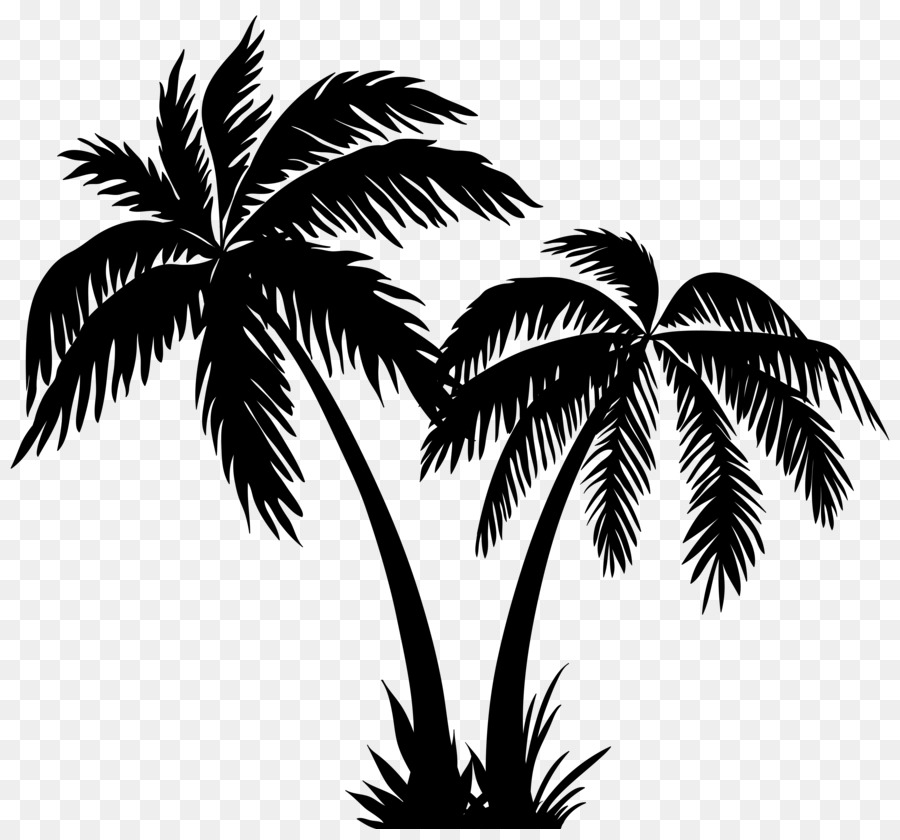 Coconut Tree Png White & Free Coconut Tree White.png Transparent.