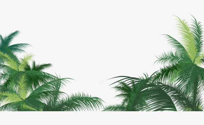 Coconut Tree PNG Images, Download 2,539 PNG Resources with.