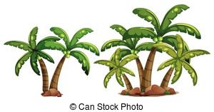 Coconut trees Illustrations and Clip Art. 9,035 Coconut trees.