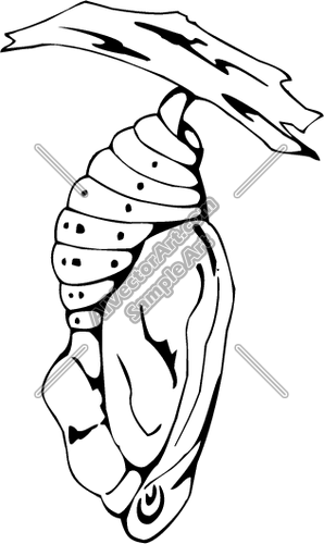 Butterfly flying out of cocoon clipart.