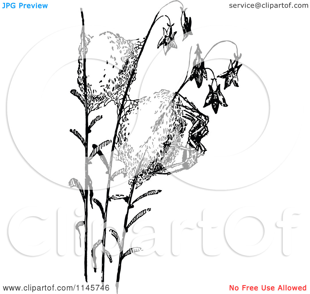 Clipart of a Retro Vintage Black and White Spider and Silk Cocoon.