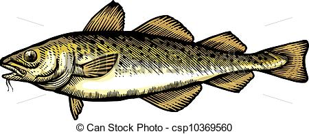 Cod Stock Illustration Images. 556 Cod illustrations available to.