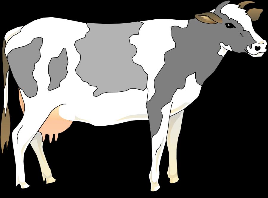 Cow Clip Art Cow Clipart Links Cow Images Clipart.