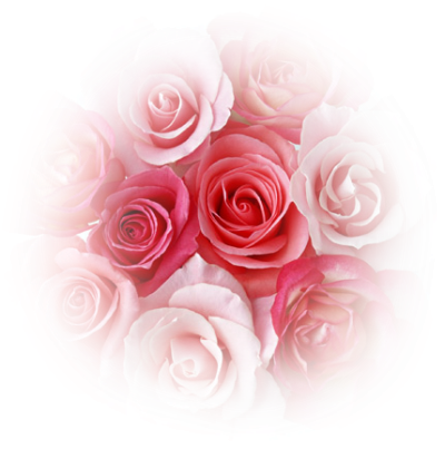Coeur De Roses Rouge. Rosas Png Tubes Pi #68897.