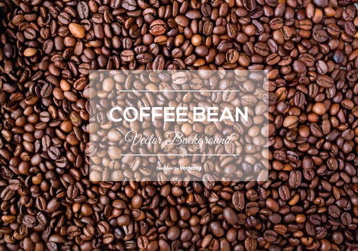 Coffee Bean Background Texture.