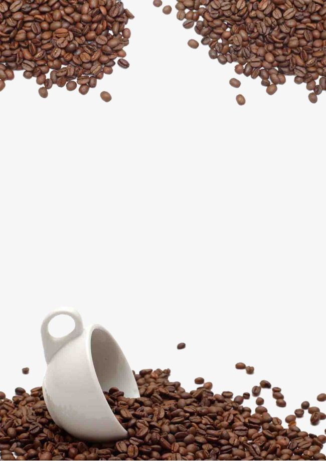 Coffee Beans Background, Scattered Coffee Beans, White Cup, Whole.